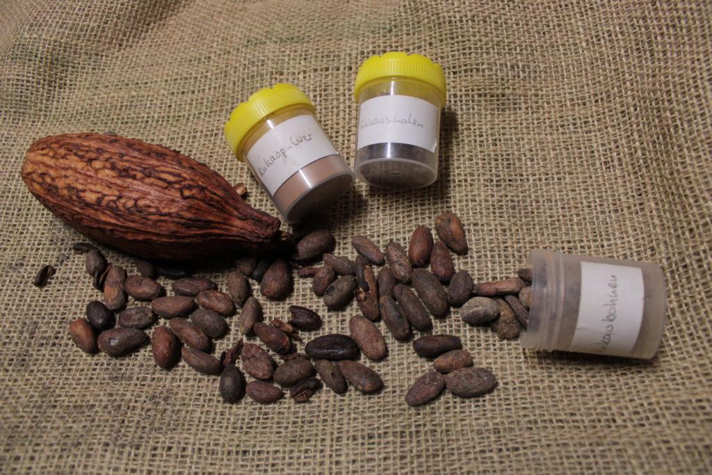 Materialien aus der Lernkiste: Kakao
