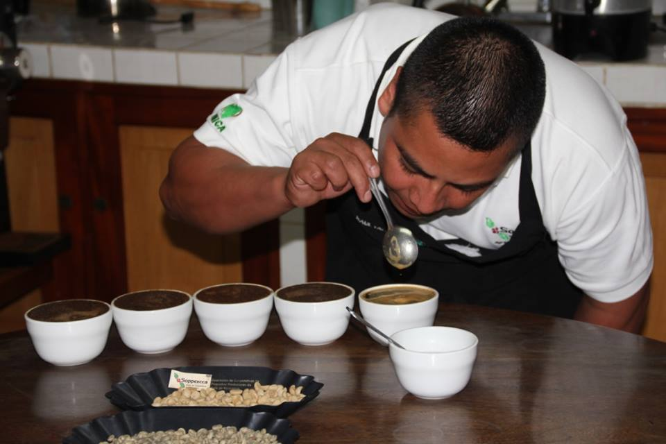 Mann testet Kaffeequalität